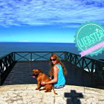 Bushbaby Blog gets a Liebster Award and Shares the Travel Blogger Love