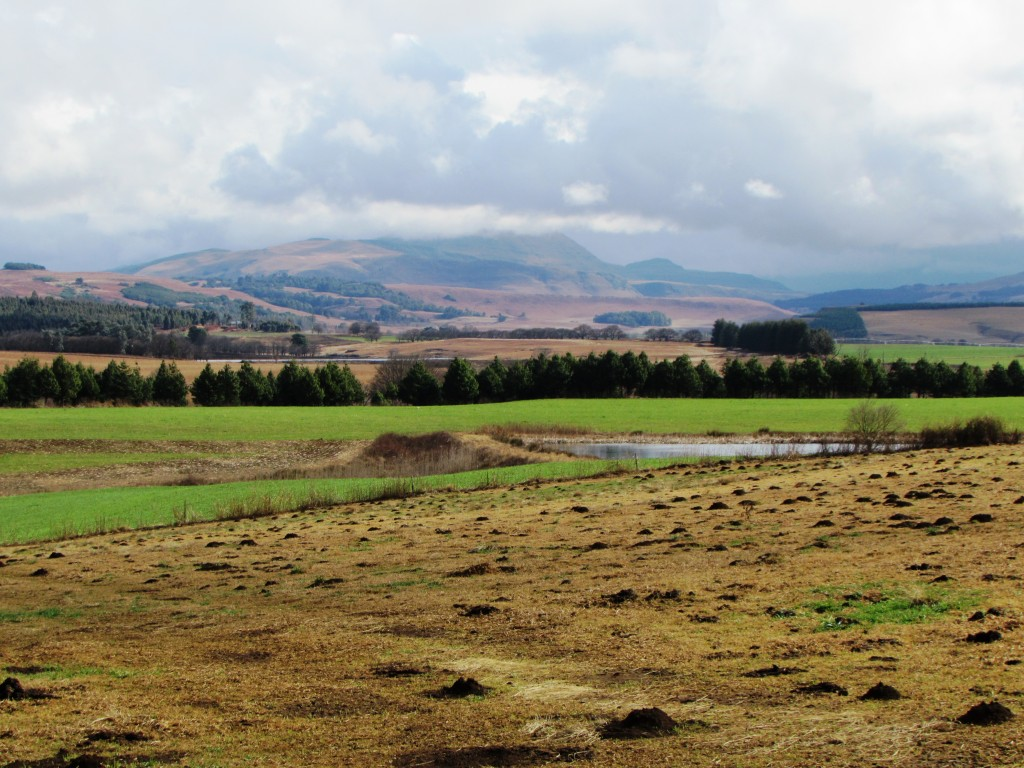 Underberg farmlands