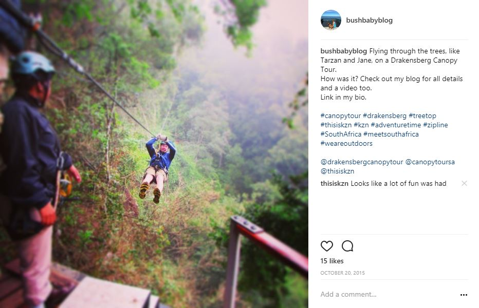 Zip lining through the forest on a KZN canopy tour in the Drakensberg