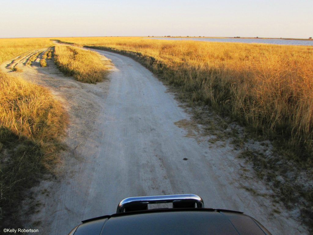 Nata Bird Sanctuary Makgadikgadi Pans, Botswana