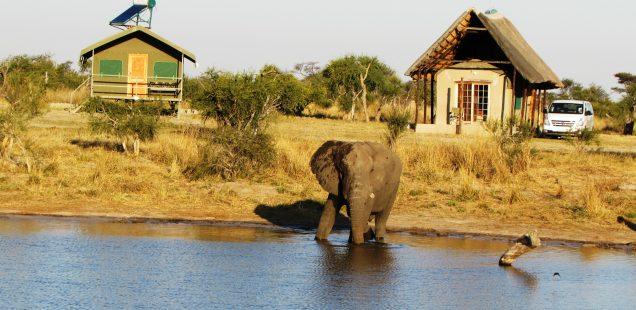 BLOG SERIES: A BOTSWANA CAMPING ADVENTURE (PART 2 OF 6)