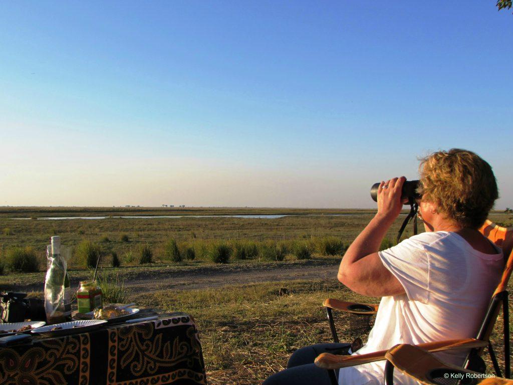 haha camp wildlife viewing