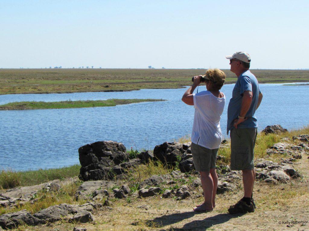Chobe River wildlife sighting binoculars