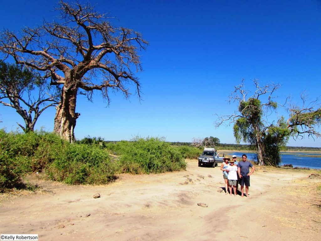 self drive in Chobe National Park