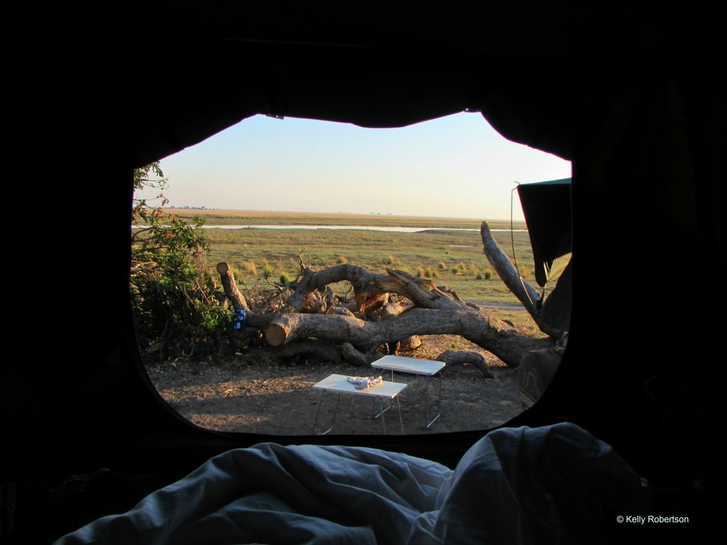 View from inside a rooftop tent at Ihaha camp Botswana