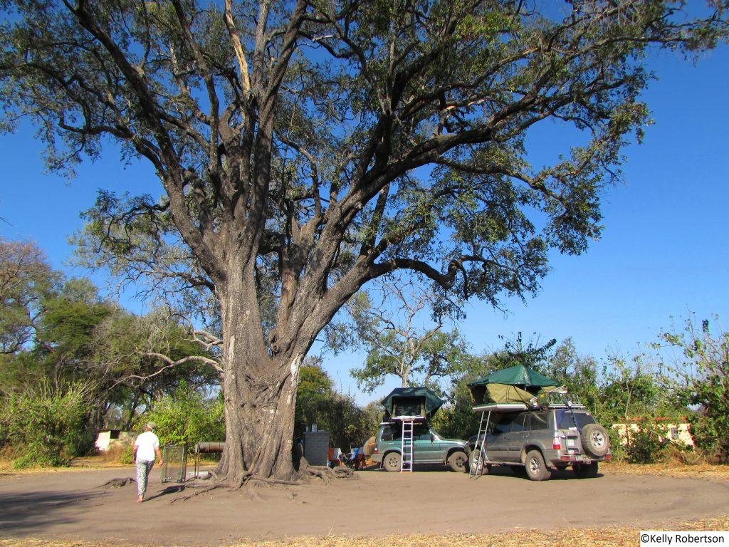 Linyanti campsite, Chobe National Park, Botswana