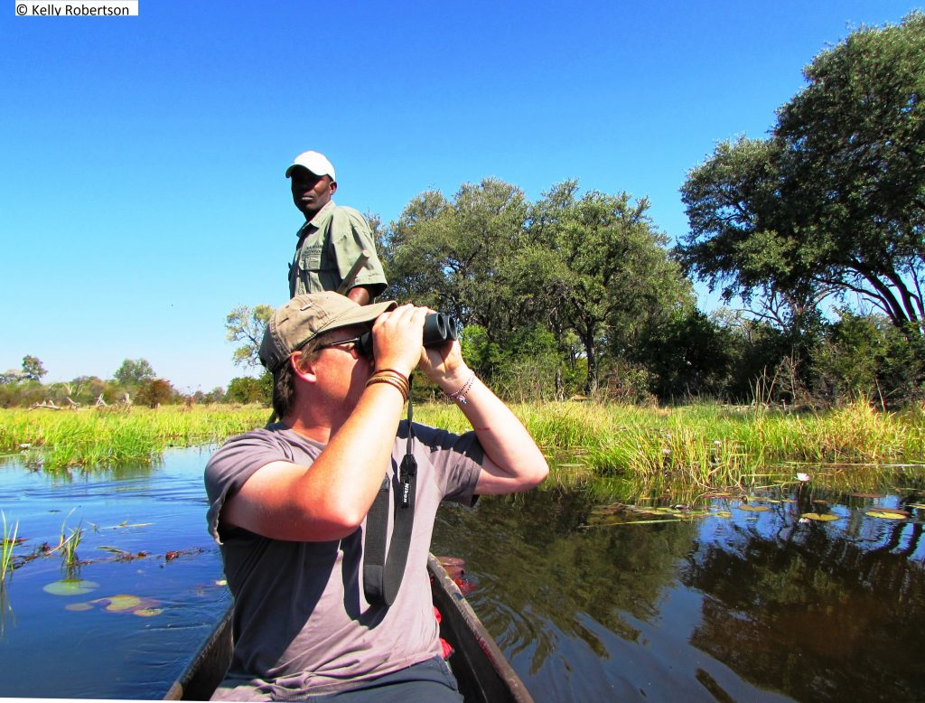 bird watching from a mokoro, Khwai Botswana
