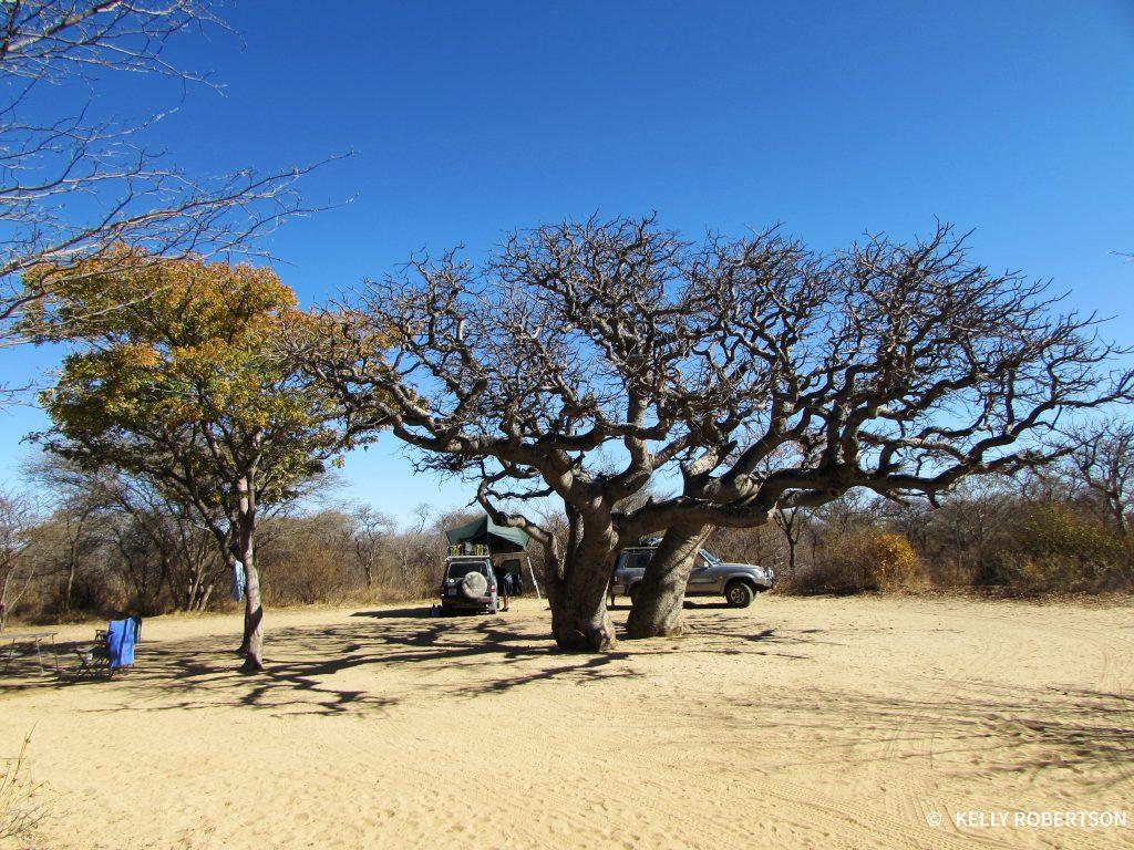 Khama Rhino Sanctuary Campsite 9